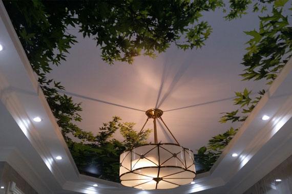 Натяжные потолки - фото 4